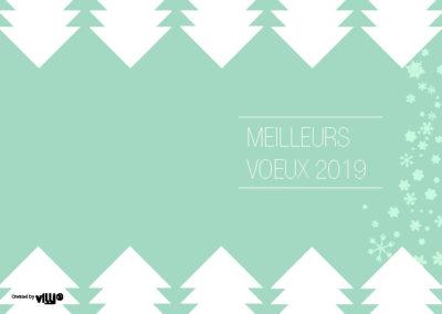 Voeux_105x15019