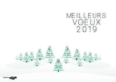Voeux_105x15032