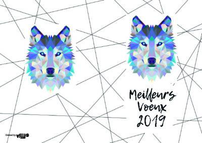 Voeux_105x15034