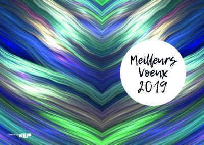 Voeux_105x15035