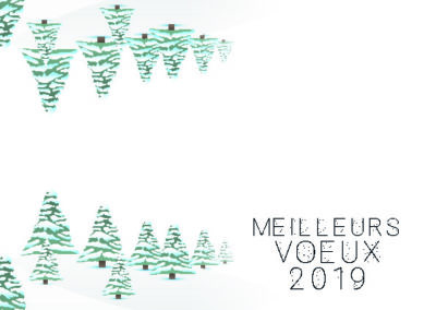 Voeux_210x10528