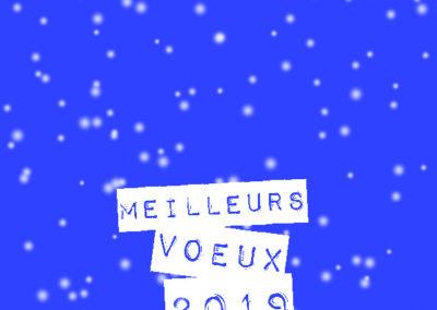 Voeux_210x10529