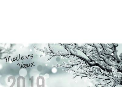 Voeux_210x10532