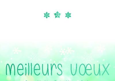 Voeux_210x10536